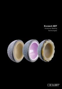 Exceed ABT. Advanced Bearing Technologies
