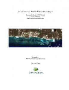 Executive Overview: PUNTACANA Coastal Marine Project. Prepared for Grupo PUNTACANA Board of Directors Punta Cana, Dominican Republic