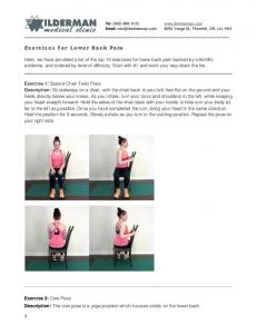 Exercises For Lower Back Pain