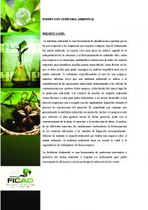 EXPERTO EN AUDITORIA AMBIENTAL