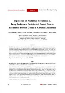 Expression of Multidrug Resistance 1, Lung Resistance Protein and Breast Cancer Resistance Protein Genes in Chronic Leukemias