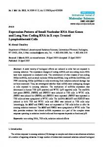 Expression Pattern of Small Nucleolar RNA Host Genes and Long Non-Coding RNA in X-rays-Treated Lymphoblastoid Cells