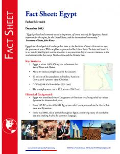 Fact Sheet. Fact Sheet: Egypt. Farhad Mirzadeh. December 2013