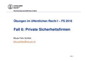 Fall 6: Private Sicherheitsfirmen