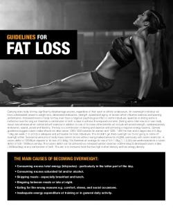 FAT LOSS GUIDELINES FOR THE MAIN CAUSES OF BECOMING OVERWEIGHT: