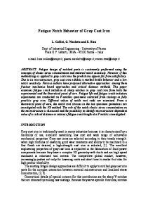 Fatigue Notch Behavior of Gray Cast Iron