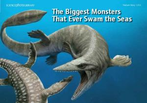 Feature Story The Biggest Monsters That Ever Swam the Seas