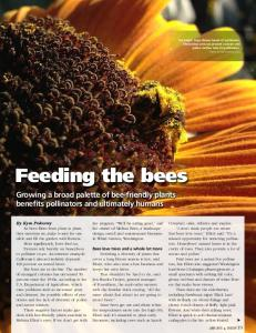 Feeding the bees. Growing a broad palette of bee-friendly plants benefits pollinators and ultimately humans