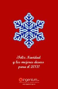 Feliz Navidad y los mejores deseos para el 2013!