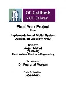 Final Year Project Thesis