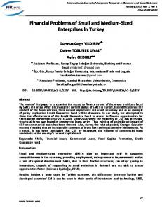 Financial Problems of Small and Medium-Sized Enterprises in Turkey