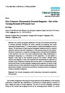 First Trimester Ultrasound in Prenatal Diagnosis Part of the Turning Pyramid of Prenatal Care