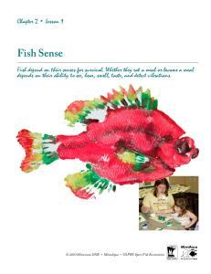 Fish Sense. Chapter 2 Lesson 1