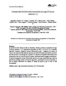 Fitotoxicidad de herbicidas hormonales en trigo (Triticum aestivum L.)