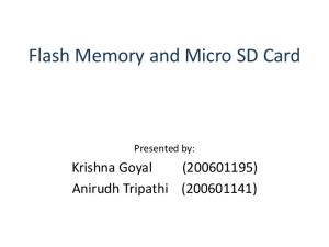 Flash Memory and Micro SD Card