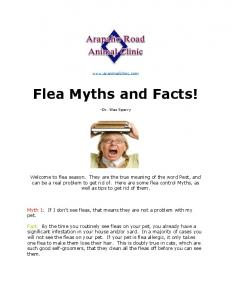 Flea Myths and Facts!