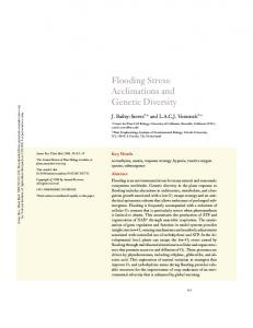 Flooding Stress: Acclimations and Genetic Diversity