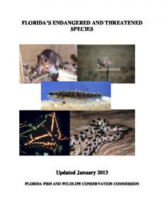 FLORIDA S ENDANGERED AND THREATENED SPECIES