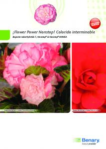 Flower Power Nonstop! colorido interminable