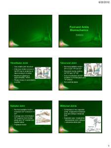 Foot and Ankle Biomechanics