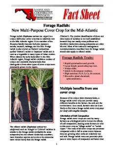 Forage Radish: New Multi-Purpose Cover Crop for the Mid-Atlantic