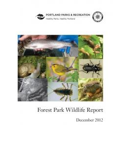 Forest Park Wildlife Report