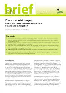 Forest use in Nicaragua