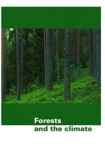 Forests and the climate