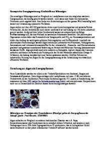 Forschung an Algen als Energiepflanzen