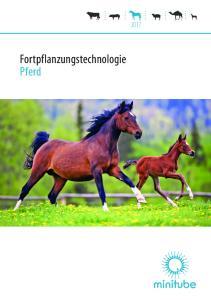 Fortpflanzungstechnologie Pferd