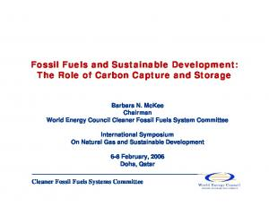 Fossil Fuels and Sustainable Development: The Role of Carbon Capture and Storage