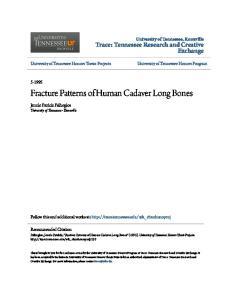 Fracture Patterns of Human Cadaver Long Bones