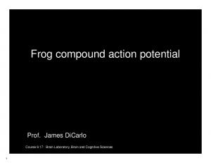 Frog compound action potential
