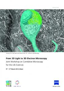 From 3D Light to 3D Electron Microscopy Joint Workshop on Correlative Microscopy for the Life Sciences