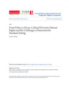 From Policy to Praxis: Cultural Diversity, Human Rights and the Challenges of International Standard-Setting