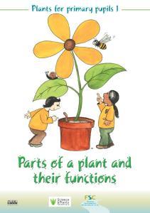 FSC Plants for primary pupils 1