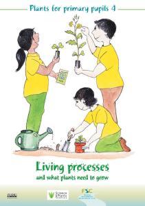 FSC Plants for primary pupils 4