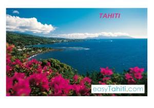 FULL DAY SAFARI 4X4 - Tahiti Safari Expedition