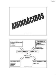 FUNCIONES DE LOS AA???