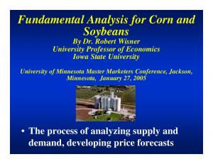 Fundamental Analysis for Corn and Soybeans