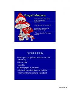 Fungal Infections. Fungal biology