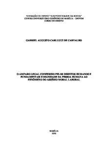 GABRIEL AUGUSTO CARLUCCI DE CARVALHO