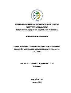 Gabriel Rocha dos Santos