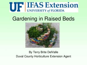 Gardening in Raised Beds. By Terry Brite DelValle Duval County Horticulture Extension Agent