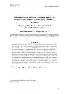 Garrapatas (Acari: Ixodidae) asociadas a perros en diferentes ambientes de la provincia de Corrientes, Argentina