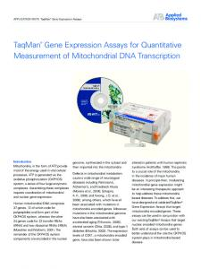 Gene Expression Assays for Quantitative Measurement of Mitochondrial DNA Transcription
