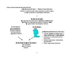 GENE MUTATION = POINT MUTATION