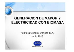 GENERACION DE VAPOR Y ELECTRICIDAD CON BIOMASA