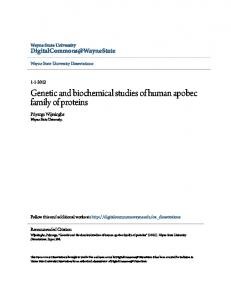 Genetic and biochemical studies of human apobec family of proteins