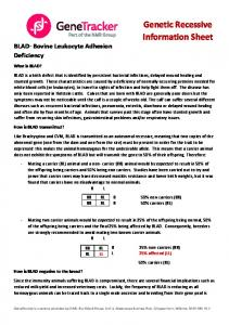 Genetic Recessive Information Sheet